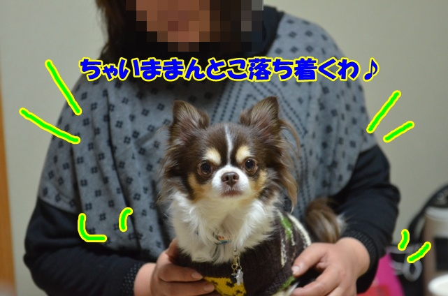 DSC_4138_20130111220351.jpg