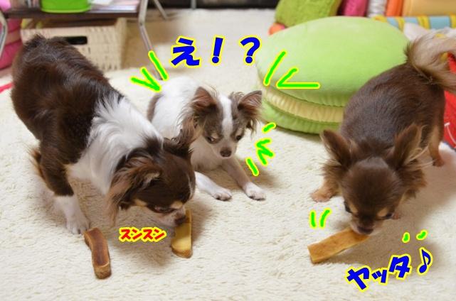 DSC_8024.jpg
