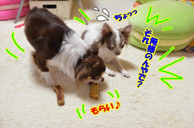 DSC_8025.jpg
