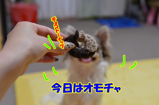 DSC_8821_20120806234553.jpg