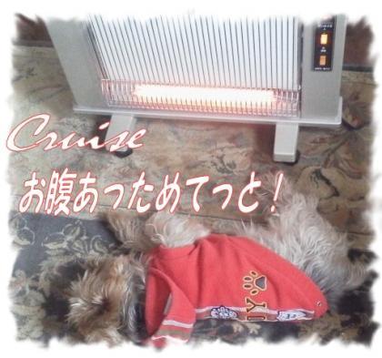 2012110307390000_convert_20121103084501.jpg