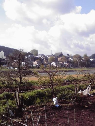 井田川河畔6