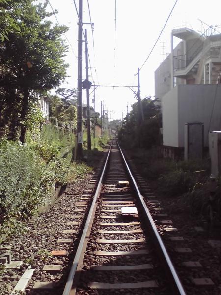 横須賀線の線路