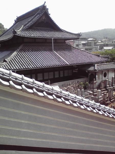 白壁越しの大屋根