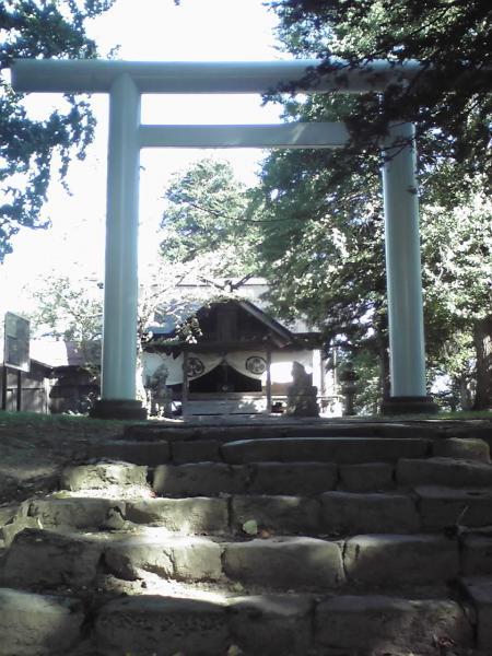 葵神社の鳥居