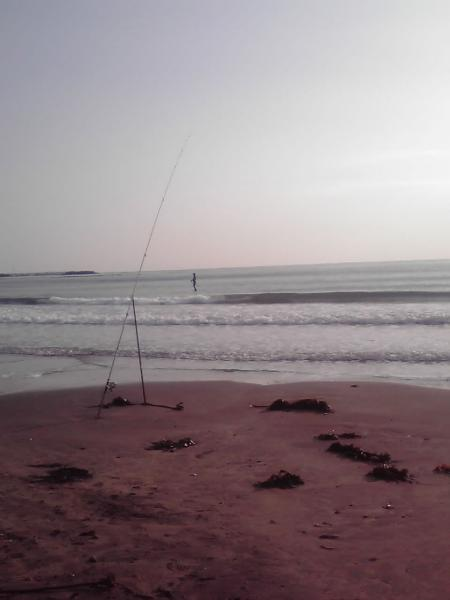 サーファーと釣竿