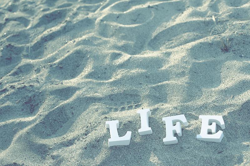 life_1.jpg
