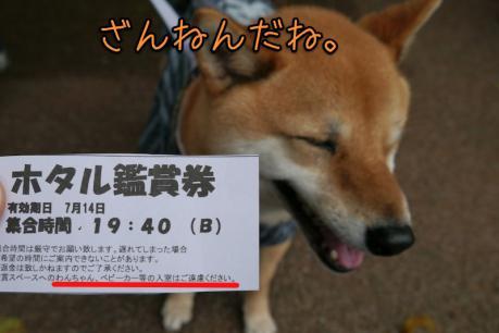 EOS7D_20120714 _P1010883