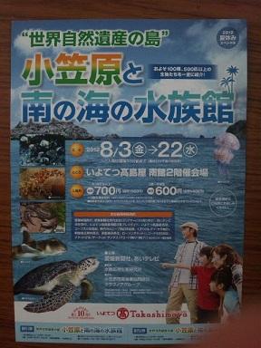 水族館チラシ