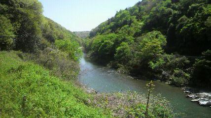 土岐川がきれい