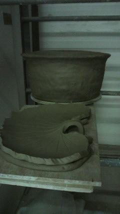 睡蓮蜂と巨大皿