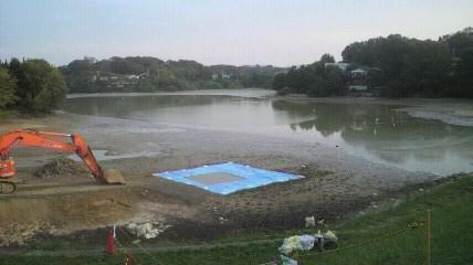 10月6日朝の濁り池