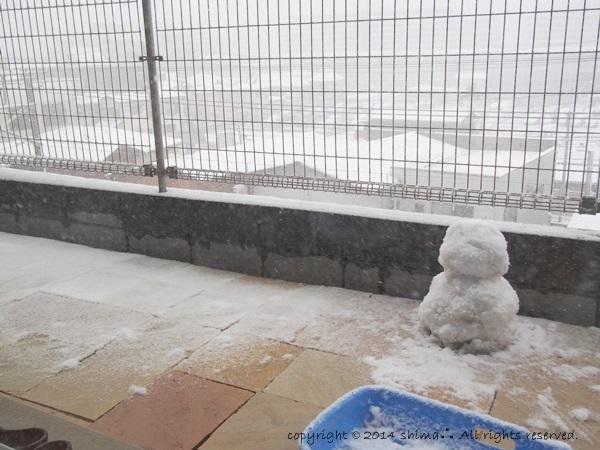 20140210大雪1
