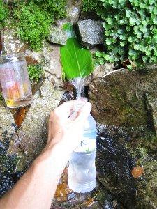 葛谷の清水