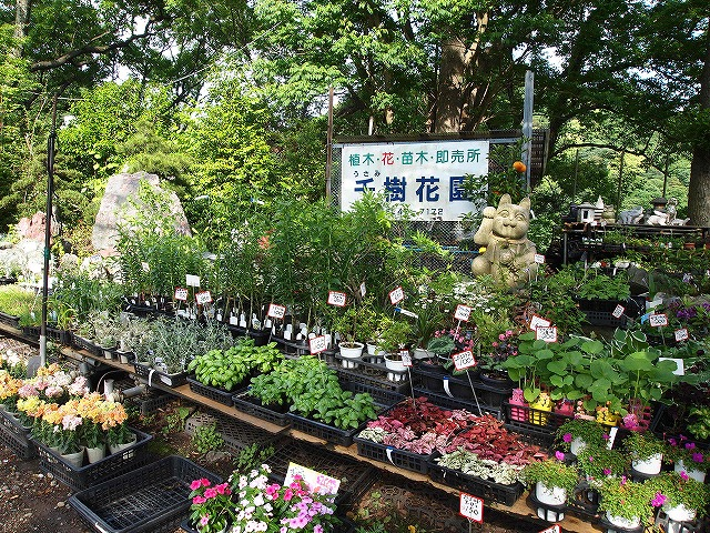 047峠の花屋さん