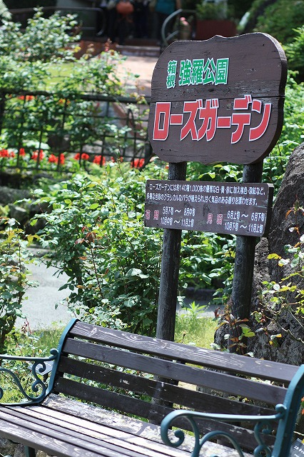 IMG_6634強羅公園