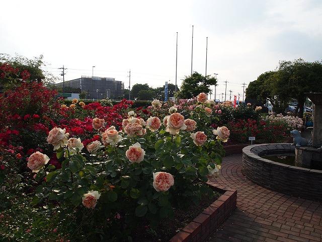 170道の駅めぬま