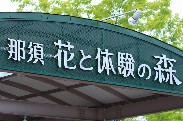 IMG_9662那須花と体験の森