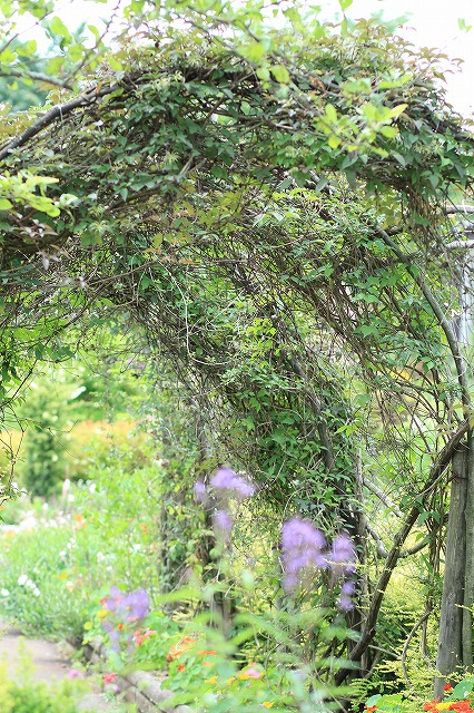 IMG_9700那須花と体験の森