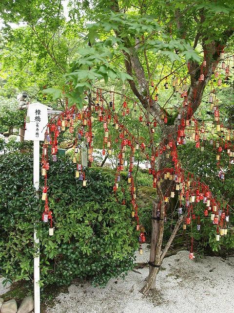 033上賀茂神社