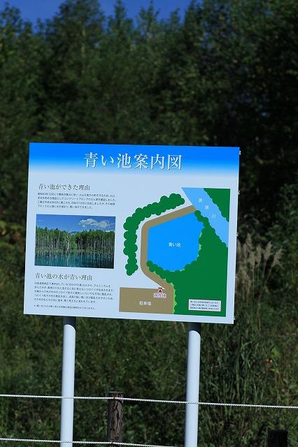 IMG_1742青い池