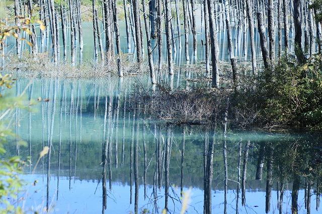 IMG_1743青い池