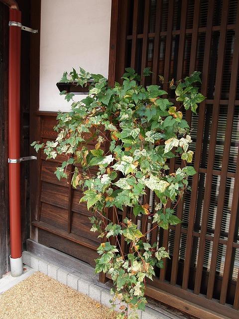 031奈良井宿