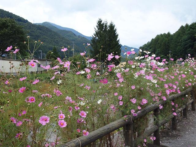 059奈良井宿