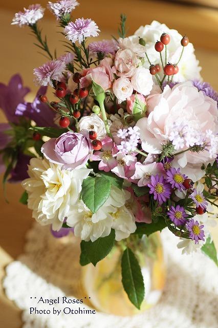 IMG_2694お庭の花達