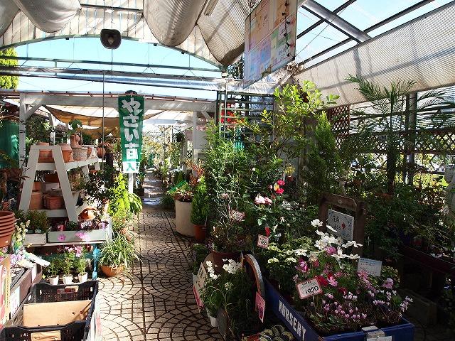 004むさしの花壇