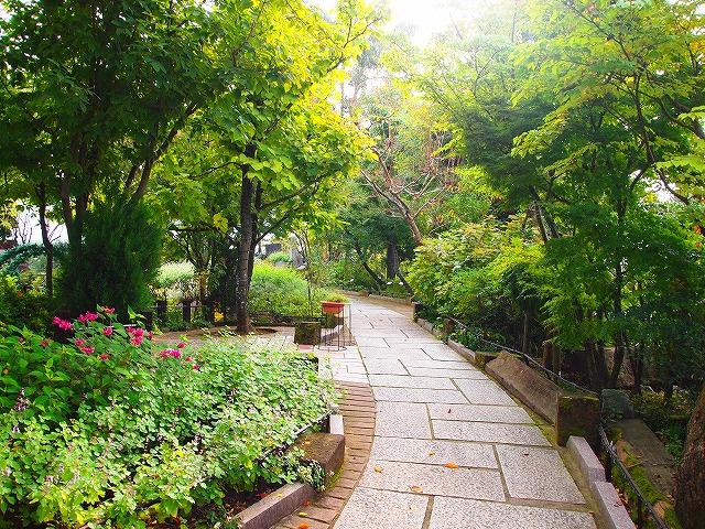 038ハーブ庭園