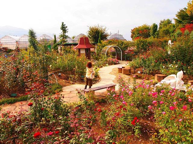 052ハーブ庭園