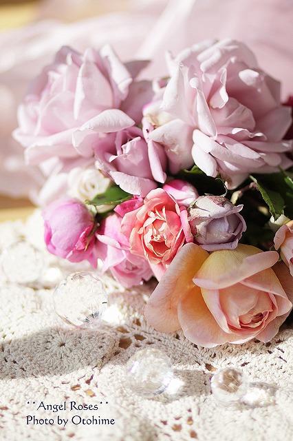 IMG_3738乙姫ガーデンのバラ