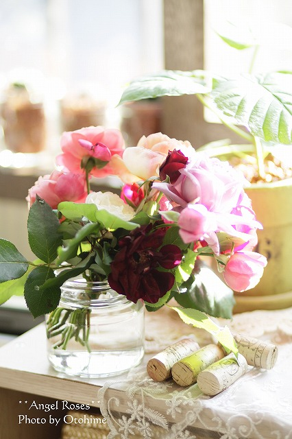 IMG_3822お庭のバラ達