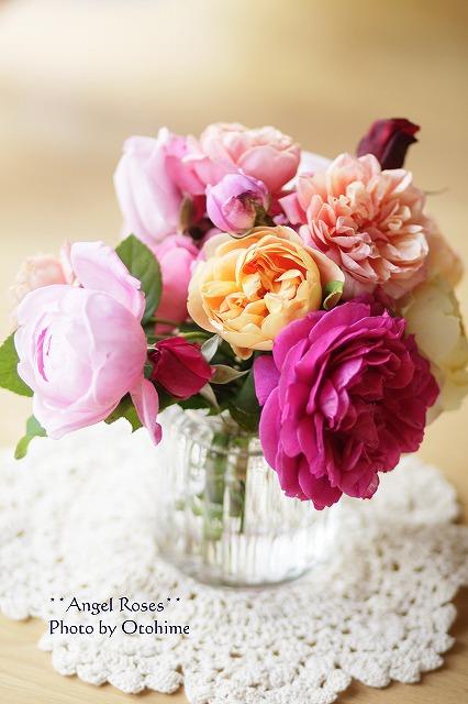 IMG_3854乙姫ガーデンのバラ