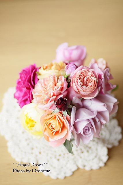 IMG_3878乙姫ガーデンのバラ