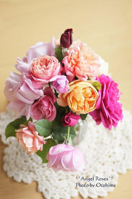 IMG_3890乙姫ガーデンのバラ