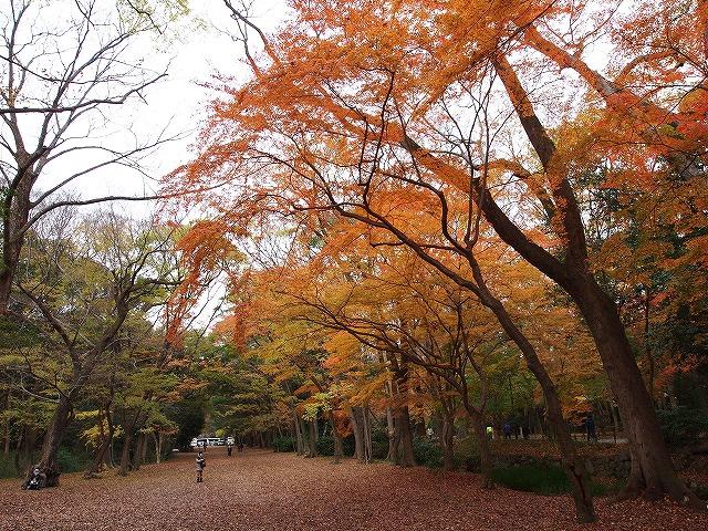 075下賀茂神社