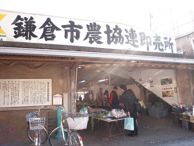 001鎌倉へ~