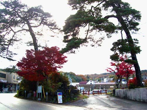 tenryukyoaki4.jpg