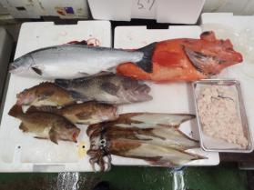 7鮮魚セット228
