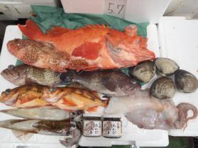 15鮮魚セット228