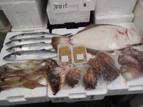 4鮮魚セット430