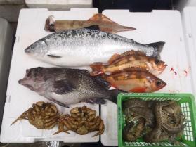 3鮮魚セット430