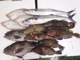 2鮮魚セット430