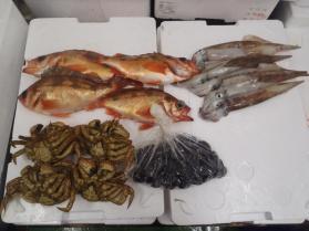 19鮮魚セット430
