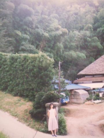 21-7703 田舎、裏の竹林