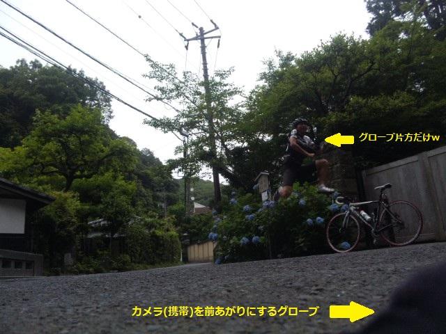 SH3H1169_2.jpg
