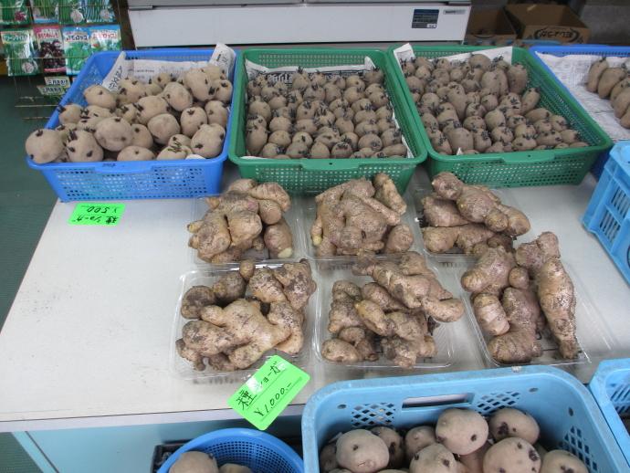 平井商店4