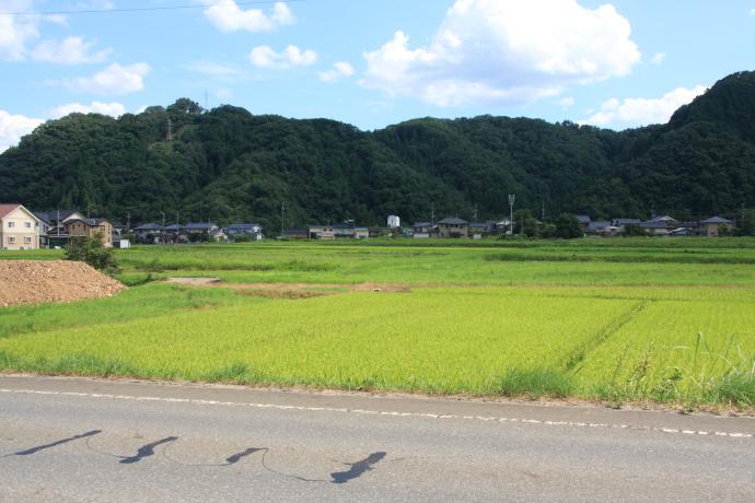豊岡自動車道3
